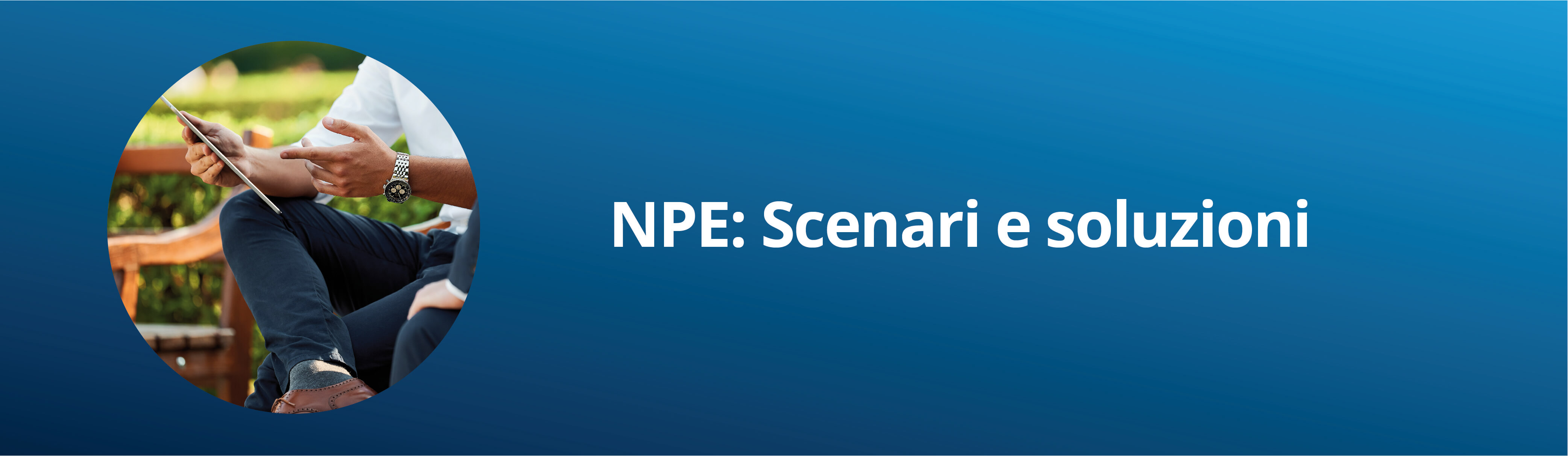 Non Performing Exposures (NPE)